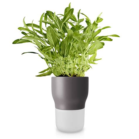 herb pot self watering herb pot by eva solo