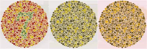 what does color blindness look like colorvisiontesting colorblind
