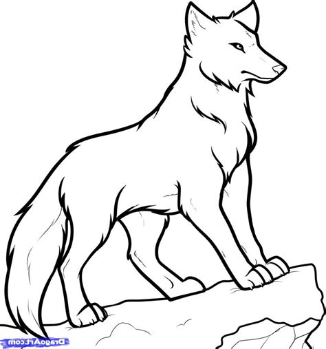 anime wolf drawings easy how to draw a wolf easy drawing of a wolf how to draw wolf