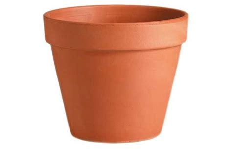 flower pot cm diameter eco city hydroponics singapore