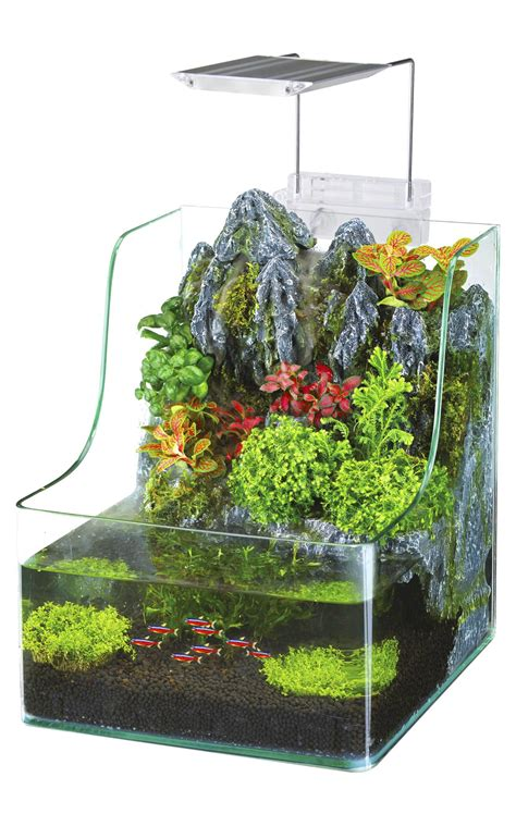 best plants for self contained terrarium penn plax aqua terrarium planting tank with aquarium for fish waterfall led light