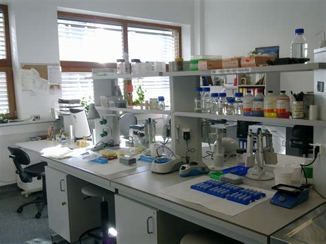 design lab free file laboratorium biologia molekularna jpg wikimedia commons