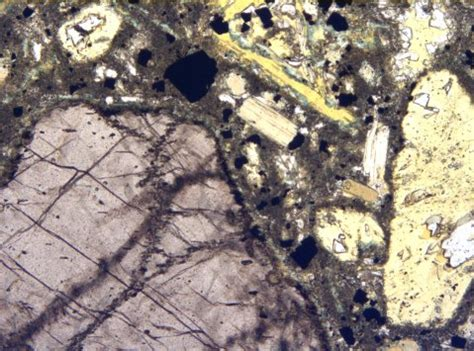 spinel in thin section kimberlitic rocks of new york state