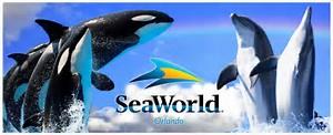 Image result for seaworld san antonio