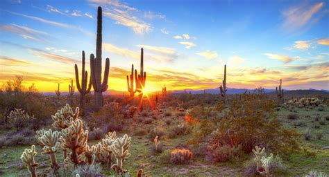 Free Detox Centers In Tucson Az by Accommodations Visit Tucson Autos Post