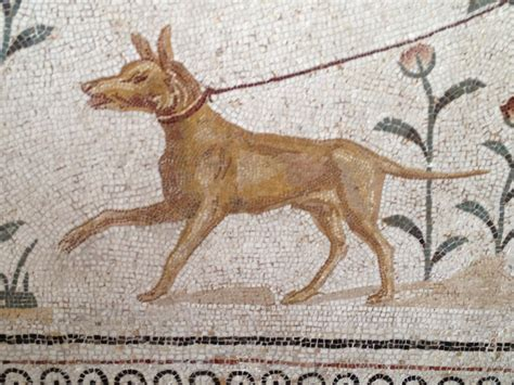 ancient dogs 142 best images about dogs ancient rome on coins naples and statue of