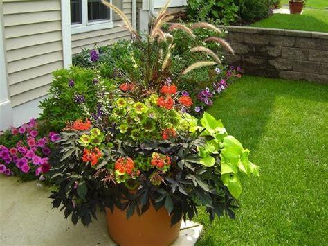 container gardening container gardening tips bob vila