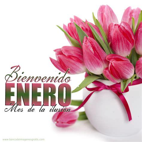 imagenes octubre mes de las princesa imagenes con flores para dar la bienvenida a enero