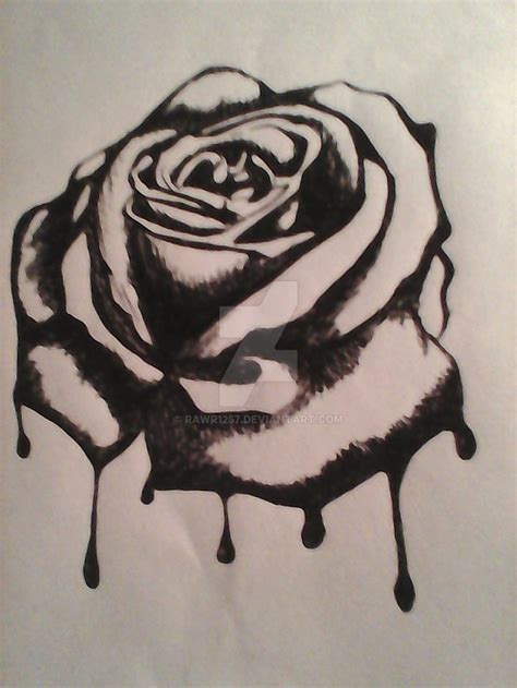 bleeding black rose tattoo dongetrabi black drawing bleeding images