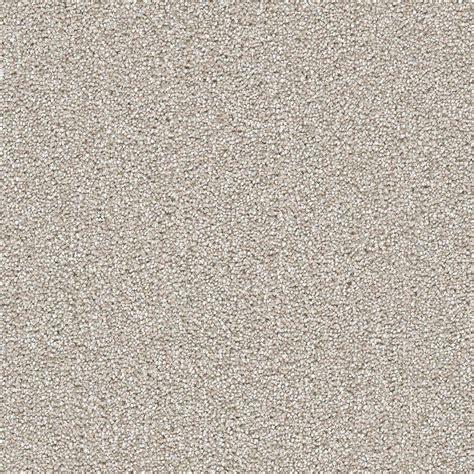 Home Decorators Carpet by Home Decorators Collection Carpet Sle Soft Breath I