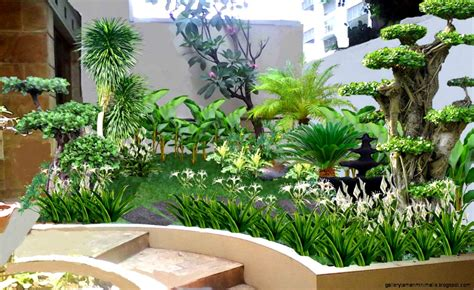 desain kemasan tanaman hias tanaman taman minimalis gallery taman minimalis