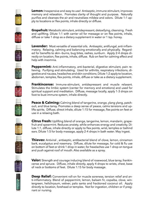 the top 10 best blogs on columbus yoga on high s top 10 essential oils yoga on high blog