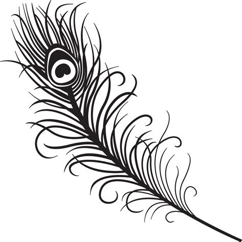 peacock feather clipart black and white clipart panda