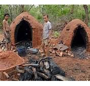 Blog Dinomar Miranda Arraias TO Ricos Fazendeiros S&243
