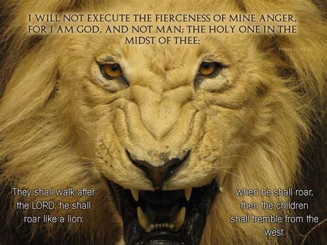 lions roar lion roaring wallpapers 77