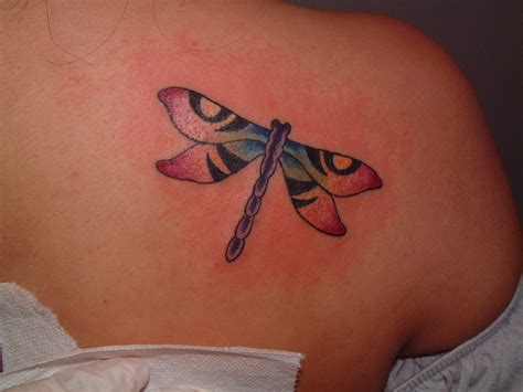 tattoos of dragonflies dragonfly tattoos designs ideas and meaning tattoos for you
