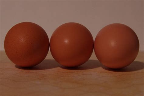 can you color brown eggs all about egg color community chickens