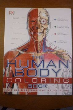 human anatomy coloring book dk 1000 images about dk books on eyewitness
