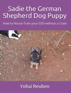 how to house a without a crate sadiethegermanshepherddog the german shepherd puppy how to house
