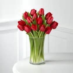 tulpen vase die tulpe bringt frische mit sie symbolisiert den fr 252 hling