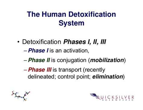 What S A Detox Transport by Quicksilver Scientific Therapeutic Detoxification System