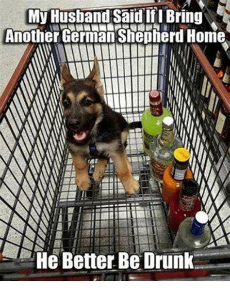 German Shepherd Memes - search german shepherd memes memes on me me