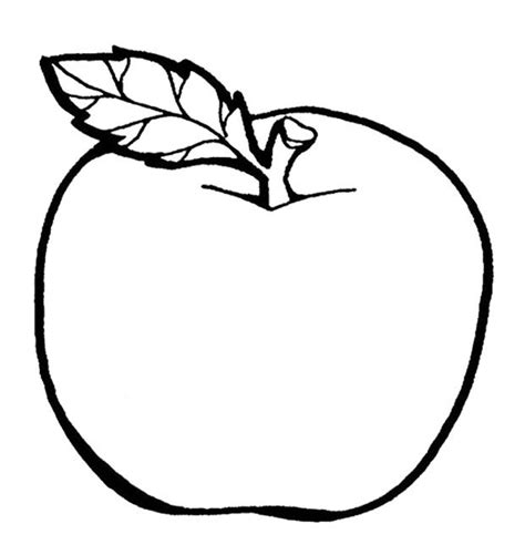 coloring page apple the delicious fruit apple coloring page colouring