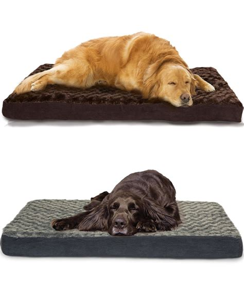 best dog bed for labs best dog beds for labs labradors love these beds dog beds