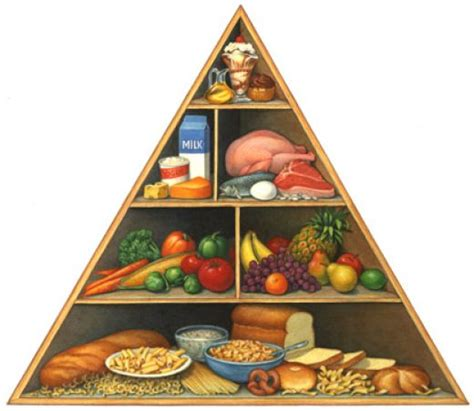 diagram of the food pyramid food pyramid diagram