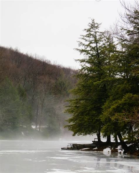 pa fish and boat seasons and bag limits dcnr homepage pa department of conservation and natural