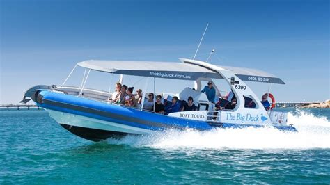 duck boat tours website the big duck boat tours south australia the land down