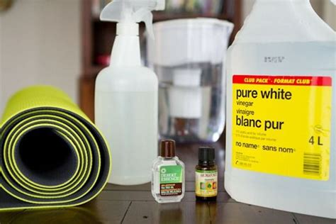 7 best images about diy mat cleaner on