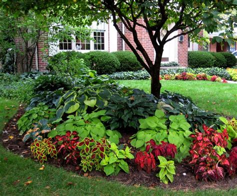 beautiful shade plantings i like the combination of the