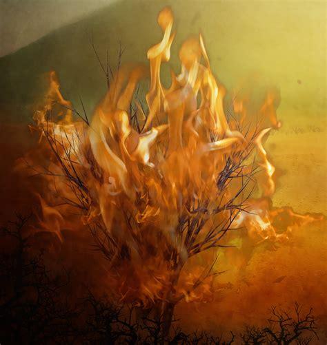 The Burning Bush exodus moses and the burning bush