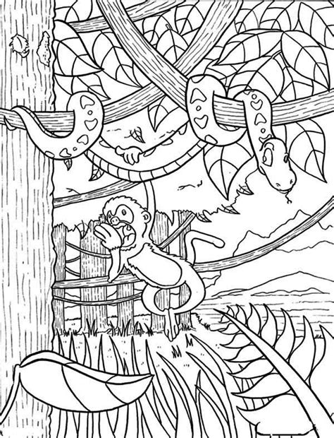 rainforest monkey coloring page coloring page for kids