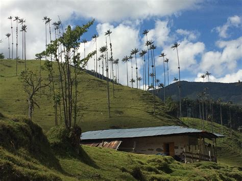 entrada valle del cocora col 244 mbia eje cafetero valle del cocora 218 nico no mundo