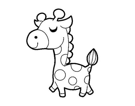 imagenes de jirafas faciles de dibujar imagen de una jirafa para colorear imagui