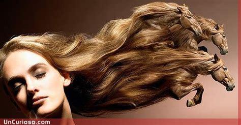 como cortar el pelo para que crezca mas rapido c 243 mo hacer que el pelo crezca mas rapido curiosidades info