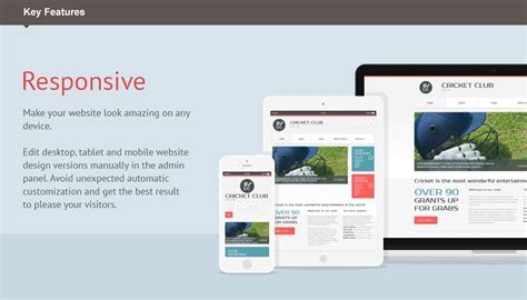 responsive layout animation responsive moto cms 3 template cricket 54638