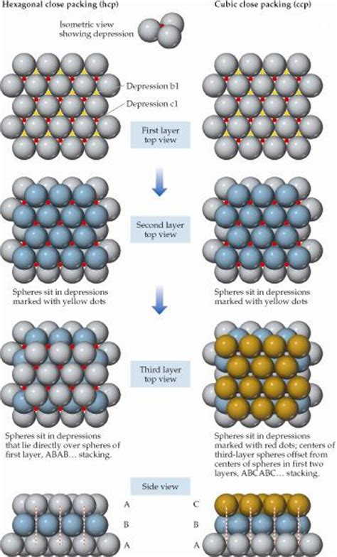 If Two Equal Right Of Privacy In A Location Consent To Search Is Valid Packing Of Equal Sized Spheres Hexagonal L Chegg