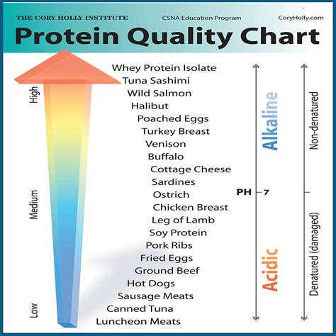 healthy fats building the best 11 high protein calories foods for building