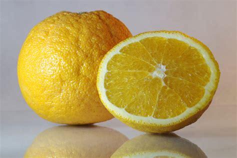 Jus Diet Sehat Lemon Herbal gambar menanam buah jeruk makanan menghasilkan alam segar sehat energi jus jeruk