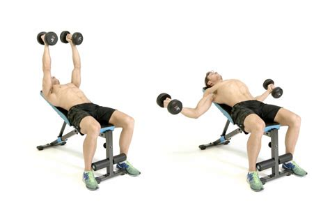 dumbbell flat bench flyes beginners guide to build bigger chest best chest exercises muscledose