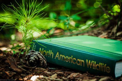 pine green color color prompt pine green weasyl
