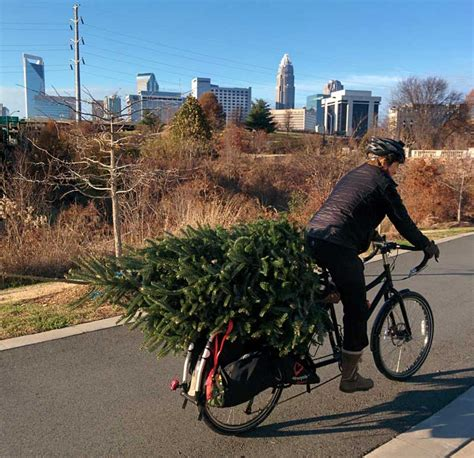 bicycle art christmas tree bikerumor pic of the day tree delivery bikerumor