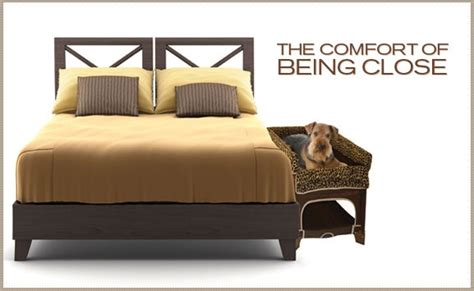 Co Sleeper For Dogs by Oh Gosh A Co Sleeper For Your What Sherlock