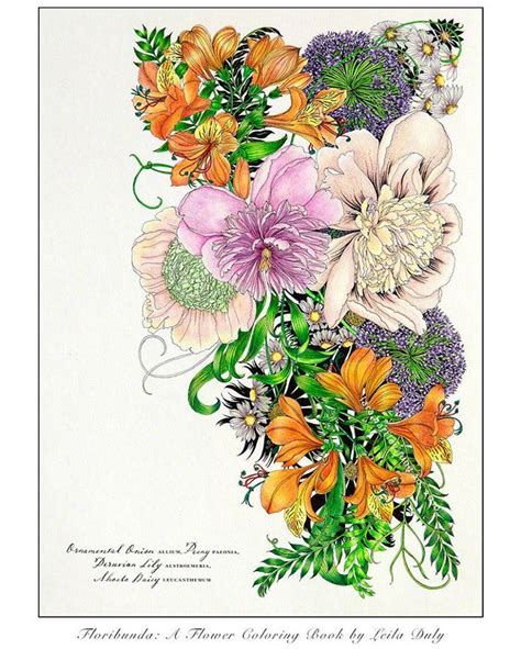 floribunda a flower colouring 49 best floribunda a flower coloring book images on coloring books coloring pages