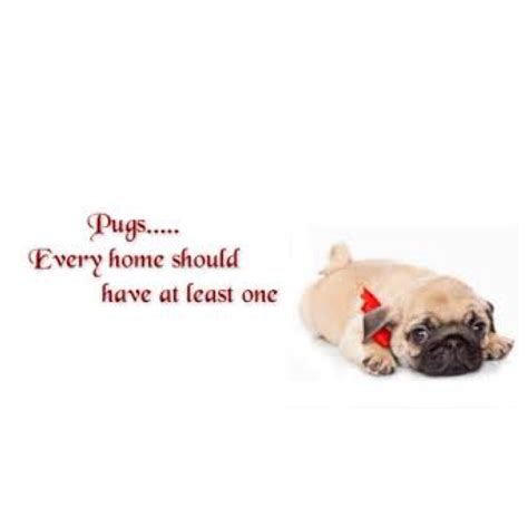 pug poems pug quotes and poems quotesgram
