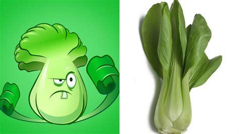 Bild Mit Echten Pflanzen by Plants Vs Zombies 2 Plants In Real
