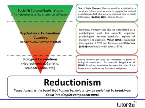 reductionism in and brain science bridging the two cultures books issues debates reductionism levels of tutor2u